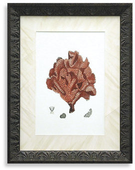 Bed Bath & Beyond Red Coral IV Wall Art