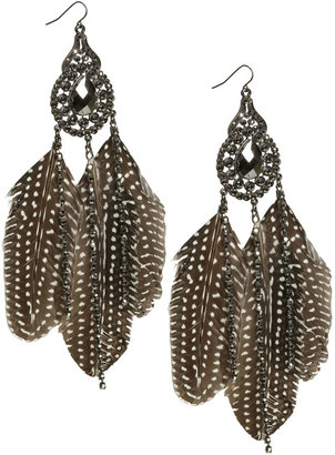 Arden B Stone Spotted Feather Earring