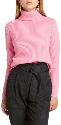 A.L.C. Mitchell Chunky Turtleneck Sweater