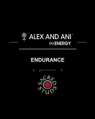 Alex and Ani Sacred Studs Endurance Bangle