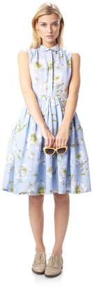 French Connection Spring Bloom Flared Shirt Dress