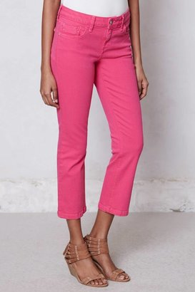 Anthropologie Pilcro Stet Slim Cropped Jeans